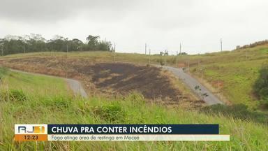 Fogo atinge área de restinga em Macaé - Incêndios começaram a fazer estragos na Lagoa de Imboassica.