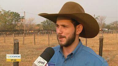 Nomes de touros que competem em Barretos assustam peões - 'Dia de Luto' é o nome de um dos touros.