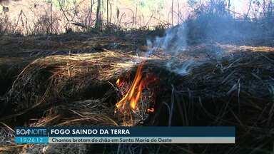 Fogo que 'brota' da terra está queimando uma área de reflorestamento - O fenômeno é registrado em Santa Maria do Oeste, perto de Guarapuava.