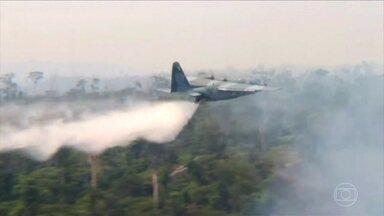 Forças Armadas começam ações no Pará para conter incêndio - Repórteres da Globo sobrevoaram as áreas mais afetadas pelas queimadas no estado.