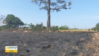 Inpe registra quase 3 mil focos de incêndios em 2019, no Acre - Mais de 200 ocorrências foram atendidas no último fim de semana.