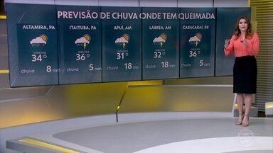 Chuva atinge parte da Amazônia Legal e diminui risco de queimada em algumas áreas - Temperaturas voltam no Sul e Sudeste.