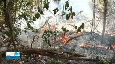 Força-tarefa atuará no combate as queimadas em três regiões do Maranhão - Trabalhos devem ser iniciados com atuação direta de militares do Exército e brigadistas do Corpo de Bombeiros.