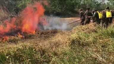 Governo proíbe queimadas controladas em todo o país - A medida, que começa a valer a partir desta quinta-feira (29), é para ajudar a controlar os incêndios na Amazônia, que, segundo especialistas, ainda vão piorar.
