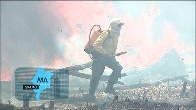 Exército reforça combate a queimadas em reserva do Maranhão - No Pará, policiais civis apreenderam dezenas de galões com gasolina usados em um incêndio criminoso na Fazenda Ouro Verde, em São Félix do Xingu.