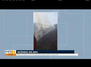Homem coloca fogo em quintal, chamas se alastram e atingem 50 hectares em Iapu - Segundo a PM, ele foi preso e irá responder por crime ambiental.