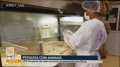 UFU integra rede nacional de produção de animais para pesquisas - De 125 propostas enviadas, apenas 26 atenderam aos requisitos e foram associados. Minas Gerais está entre os oito estados do Brasil com biotérios integrados à rede nacional.