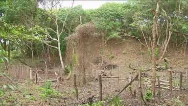 MP faz operação contra o desmatamento na Ilha de Itamaracá, PE - Ação em conjunto com as polícias Civil e Militar tem o objetivo de coibir a venda ilegal de terrenos em uma área de reserva ambiental.