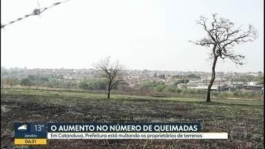 Queimadas mais que dobraram em agosto - Dados mostram aumento significativo na comparação com o ano passado. Em Catanduva, a Prefeitura aumentou o número de autuações para proprietários de terrenos.
