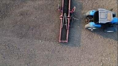 Soja Prepara - Vamos mostrar os preparativos para a safra 19/20 nas áreas queimada em MT - Vamos motrar o que os agricultores tem feito para deixar as áreas que pegaram fogo prontas para a proxima safra de soja em Mato Grosso.