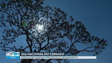 No dia nacional do Cerrado, especialistas alertam sobre a importância da preservação - Segundo especialistas, só nos últimos dois anos, o Cerrado perdeu 14.185 km², o equivalente a uma área duas vezes maior do que o Distrito Federal.