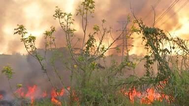 Queimada atinge área de mata entre a Vila Moraes e o bairro Porteira Preta em Mogi - Um levantamento do Corpo de Bombeiros aponta que de janeiro a agosto deste ano foram registradas 375 ocorrências de fogo em mato nas cidades do Alto Tietê.