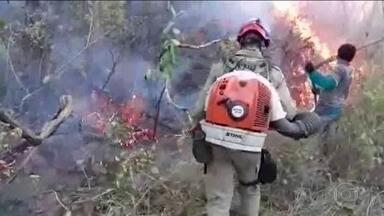Forças Armadas debelam 400 focos de incêndio na Amazônia em 19 dias - Segundo balanço do governo, mais de 20 pessoas foram presas. Em Rondônia, PF fez operação para retirar invasores de uma floresta nacional.