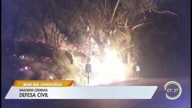 Fogo atinge área do lavandário em Cunha - Fogo não atingiu plantação principal, ponto turístico na cidade.