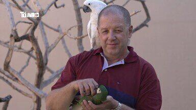 Tô Indo 14/09 - íntegra - Mário conhecer um encantador de aves em Uberlândia. No segundo bloco, Mário visita uma ordem templária em Carangola.