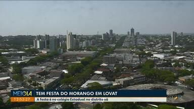 Tem delícias de morango em festa em Lovat, distrito de Umuarama - A festá é neste domingo ( 15) à partir das 19h30.