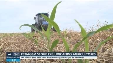 Estiagem prejudica área da agricultura no Oeste de SC - Estiagem prejudica área da agricultura no Oeste de SC