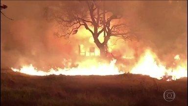 Mais de 1 milhão de hectares queimam em Mato Grosso do Sul em uma semana - Os incêndios atingiram áreas importantes de projetos de preservação da natureza.
