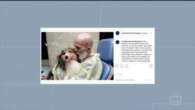 Paciente com câncer tem melhora após reencontrar cachorro, diz médico - Flávio José Santos está internado desde o dia 23 de agosto e se emocionou ao receber a visita de Agadir.