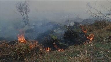 Fogo ameaça novas áreas de floresta na Amazônia e no cerrado - Governadores da Amazônia Legal e ministério do Meio Ambiente anunciam divisão de metade do fundo de R$ 430 milhões recuperados pela Lava Jato do esquema de corrupção na Petrobras. Dinheiro vai ser usado para combater as queimadas.