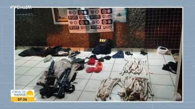 Polícia encontra armas, munições e explosivos em Ribeira do Pombal - Um homem tentou fugir, mas foi preso em flagrante.