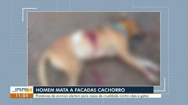 Homem mata cachorro do vizinho a facada e é detido pela polícia em Boa Vista - À PM, ele alegou que matou animal porque ele invadiu quintal e o atacou. ONG divulgou nota de repúdio e cobrou punição: 'crime bárbaro e abominável'.