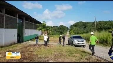 Celpe identifica furto de energia em cooperativa de alimentos em Suape - Energia desviada pelo local seria suficiente para abastecer mil residências durante um mês