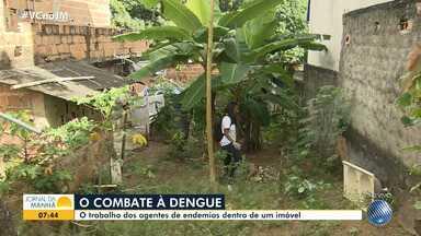 Pesquisa aponta crescimento de 667% do número de casos de dengue na Bahia este ano - Número é comparativo ao mesmo período do ano passado. Só na capital foram registrados 5.358 casos da doença.