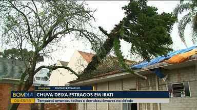 Chuva derruba árvores e destelha casas em Irati - Pelo menos 60 casas foram destelhadas, segundo a Defesa Civil.