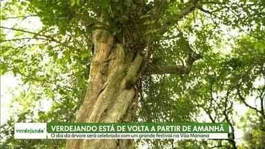 Verdejando começa neste sábado (21/09) - O dia da árvore será celebrado com um grande festival na Vila Mariana
