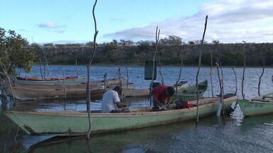 Baixa temperatura da água tem prejudicado reprodução de peixes no Vale do São Francisco - A baixa produção dificulta o trabalho de pescadores na região.