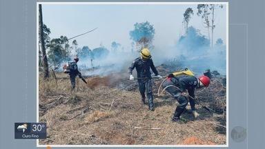 Corpo de Bombeiros combate quatro grandes incêndios no Sul de Minas - Corpo de Bombeiros combate quatro grandes incêndios no Sul de Minas