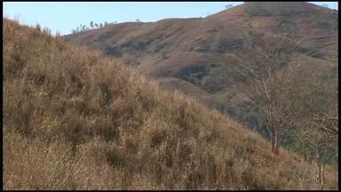 Seca traz prejuízos em Cachoeiro, ES, e produtores perdem lavouras inteiras - A falta de chuva há meses traz prejuízos para o homem do campo no Sul do ES.