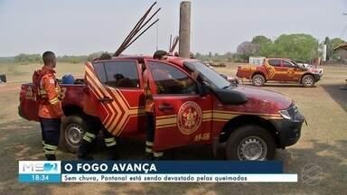 Sem chuva o Pantanal está sendo devastado pelas queimadas - A cortina de fogo e fumaça assusta. Ela surgiu na fazenda Porto Ciríaco em Aquidauana. É na cidade que o Corpo de Bombeiros montou uma base para combater os incêndios nos municípios da região.