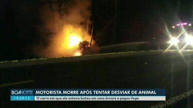 Motorista morre após tentar desviar de animal - O carro em que ele estava bateu em uma árvore e pegou fogo.