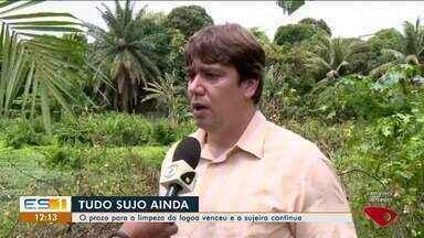 Lagoa do Aviso, em Linhares, ES, está cheia de mato e mosquito - Situação tira o sossego dos moradores.