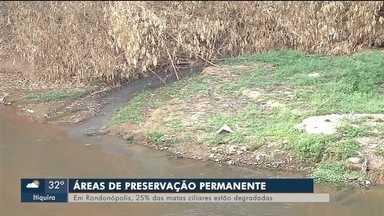 25% das matas ciliares estão degradadas em Rondonópolis (MT) - 25% das matas ciliares estão degradadas em Rondonópolis (MT)