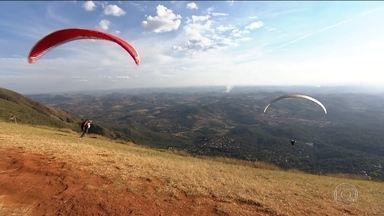 Em Brumadinho, voluntários se mobilizam para recuperar a natureza - Pilotos de paraglider voam e, do alto, lançam sobre o Vale do Rio Paraopeba uma chuva de sementes de ipê roxo, árvore nativa da região.