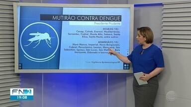 Mutirão de combate à dengue é realizado em Presidente Prudente - Ação é desenvolvida nas zonas norte e oeste.