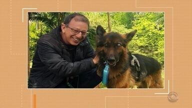 Cão agredido ganha novo tutor - Animal foi agredido pelo dono anterior, que deve receber uma multa da prefeitura de Santa Cruz do Sul.
