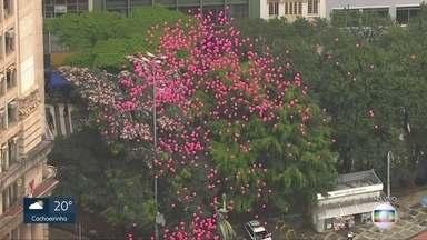 Balões para conscientizar - 1.000 balões foram soltos em SP para conscientizar sobre o câncer de mama.