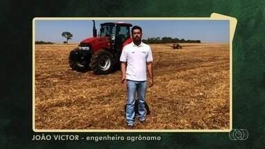 Telespectador parabeniza Jornal do Campo pelos 40 anos em Rio Verde - Veja as Imagens do Campo em Goiás.
