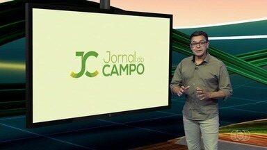 Confira os destaques do Jornal do Campo deste domingo (13) - Agro Digital: Confira a reportagem especial sobre a tecnologia usada em fazendas e doceira de Nerópolis ensina como fazer cocada de maracuja.