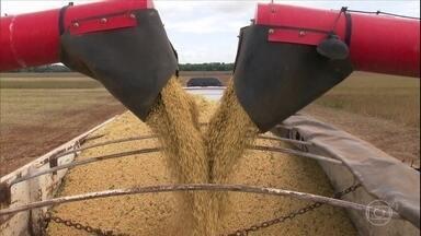 Governo projeta safra recorde de grãos no Brasil - No caso da soja, principal grão cultivado no país, levantamento prevê produção de 120,4 milhões de toneladas, alta de 4,7% em relação à safra passada.