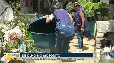 Número de casos de dengue cresce 800% em 2019, na Capital - Confira os detalhes com a repórter Hildebrando Neto.