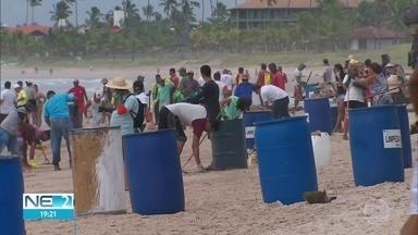 Trinta toneladas de óleo são recolhidas nas praias de Pernambuco - Moradores e turistas se juntaram para ajudar no trabalho da remoção da substância da areia e arrecifes, num exemplo de solidariedade.