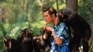 Ace Ventura 2 - Um Maluco Na Africa