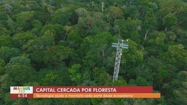 Torres auxiliam em pesquisas sobre o papel da Amazônia no clima do planeta - Tecnologia monitora cada parte do ecossistema.