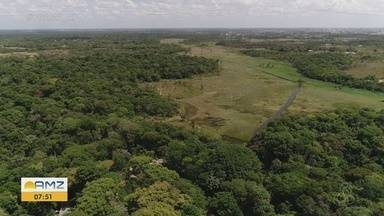 Bioparque da Amazônia vai ser inaugurado na sexta-feira, em Macapá - Visitas podem ser feitas a partir de sábado (26).