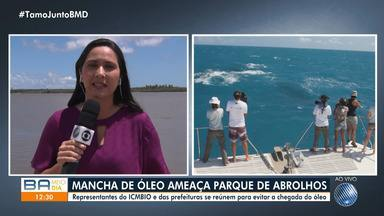 Abrolhos: ICMBio e cidades da Costa da Baleia discutem possível chegada do óleo - Substância já chegou perto da região, mas ainda não atinge o parque que é berçário das baleias jubartes e abriga a maior biodiversidade do Atlântico Sul.